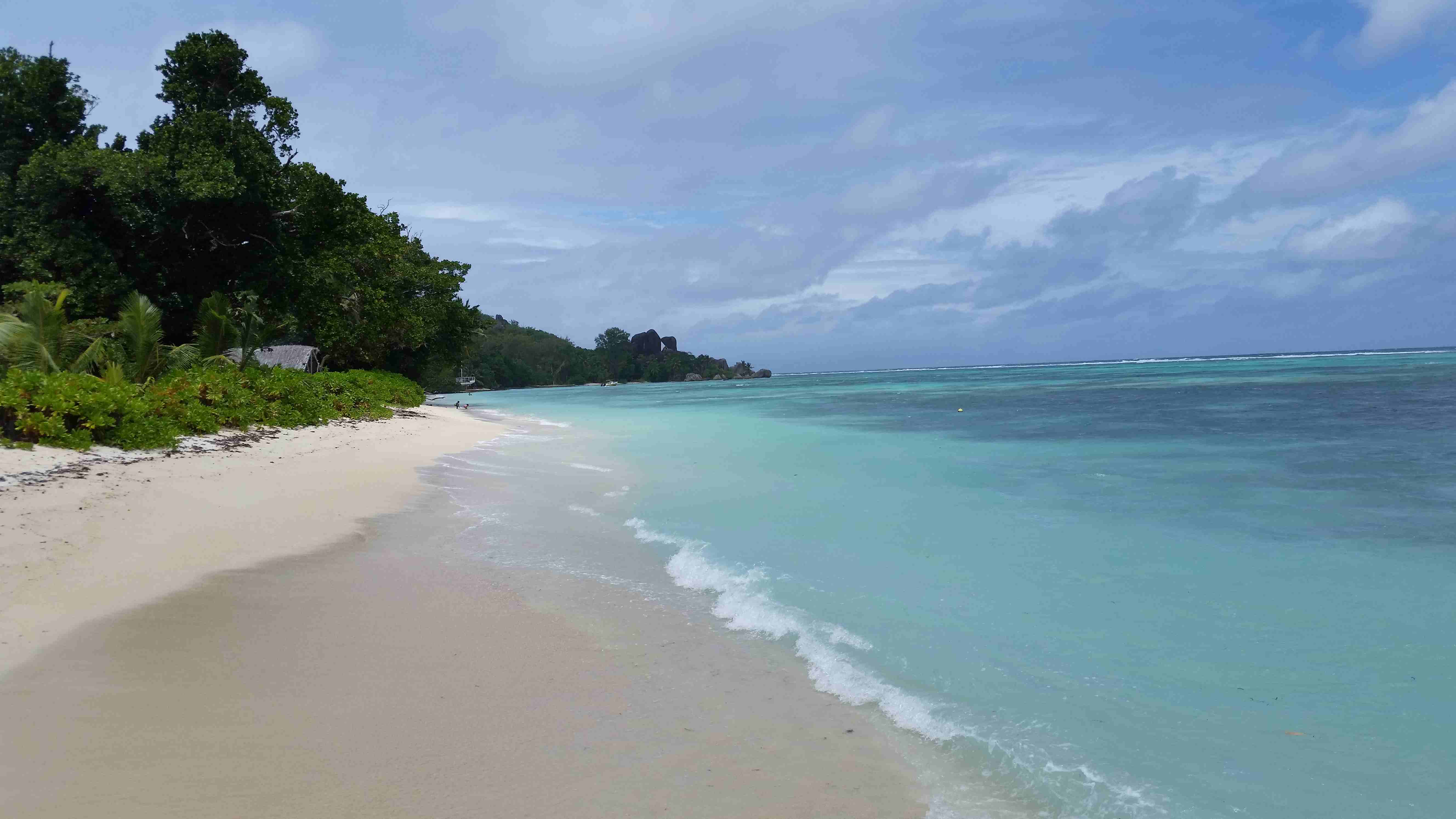 Landschildkröten Seychellen
